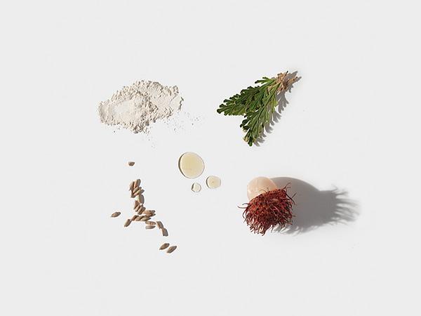 Dermalogica - Neck Fit Contour Serum ingredients